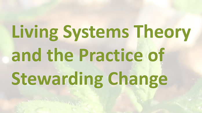 Living Systems Theory and the {Practice of Stewarding Change